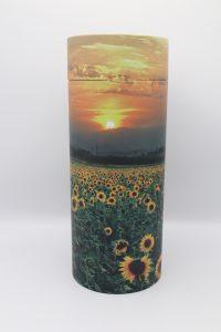 Scattering Tube - Sunflower